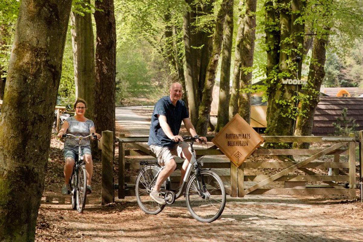 Radfahren Veluwe